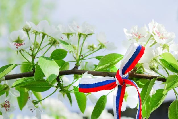 ロシアの日の概念。晴れた暖かい日に花の木の枝にロシア国旗の色で描かれたリボンで作られた弓。