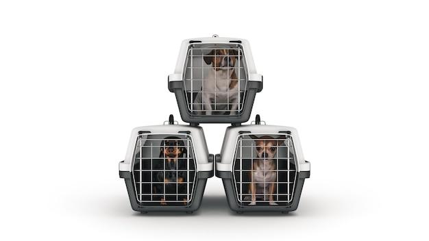 Контейнер для перевозки животных с маленькой собачкой 3d рендеринг