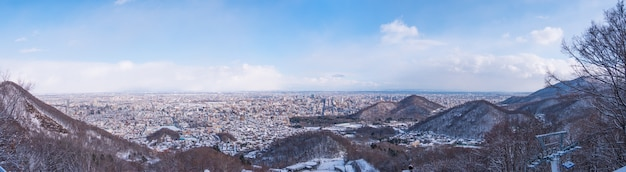 冬の雪に覆われた田舎町上面図