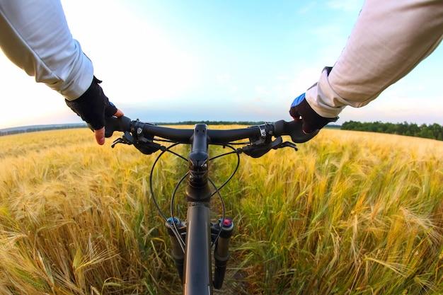 자전거 타는 사람은 밀밭과 일몰 하늘을 배경으로 자전거 핸들 바를 손으로 잡고 있습니다. 스포츠와 여행