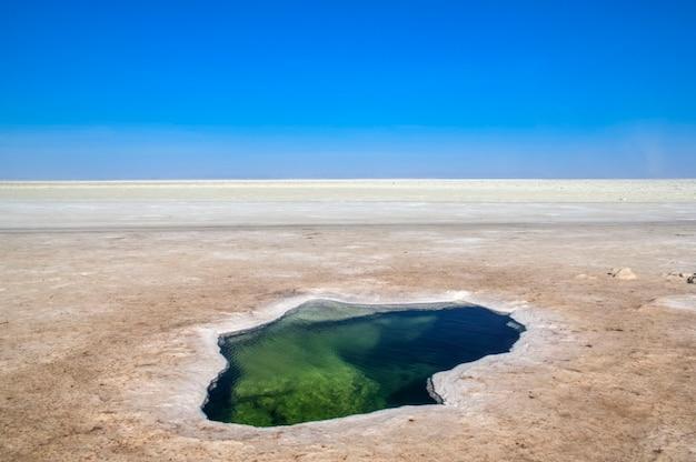 Впадина данакил северная часть афарского треугольника в эфиопии. Premium Фотографии