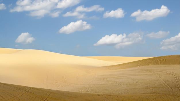 Пустыня с голубым небом в солнечный день