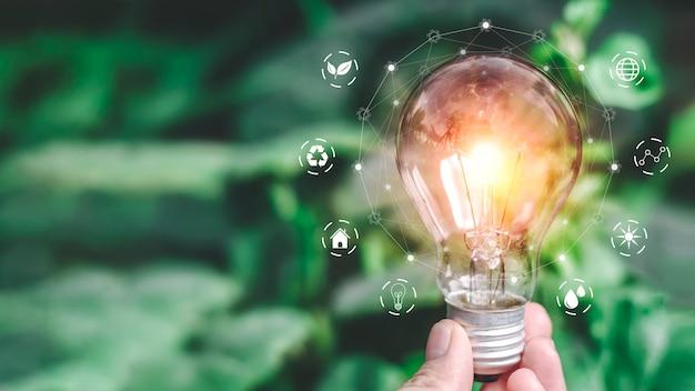 Развитие энергосбережения в экосистеме.