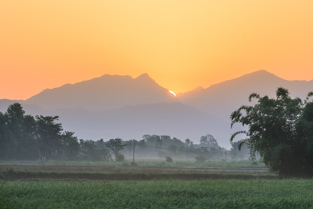 ヒマラヤ山脈に対するチトワン国立公園の早朝