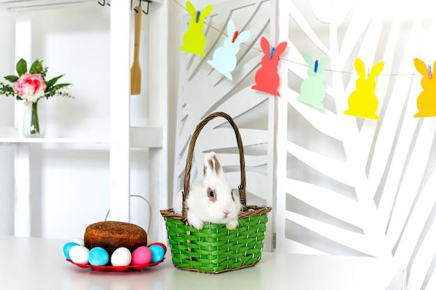 부활절 토끼는 부활절 케이크와 다채로운 계란 옆에 있는 바구니에 앉아 있습니다. 고품질 사진