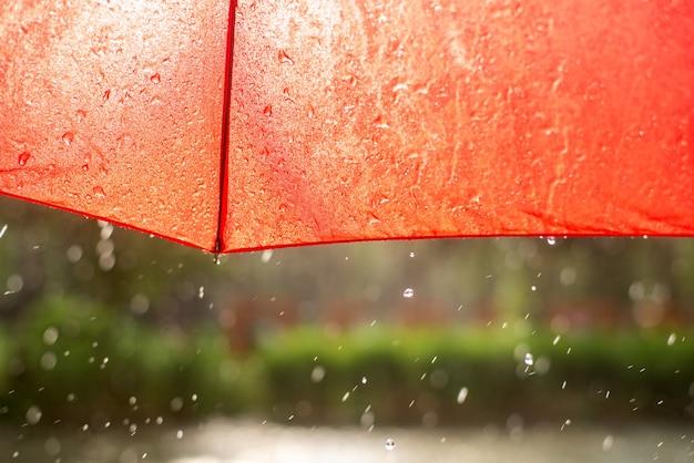 夏の雨の中の赤い傘の端