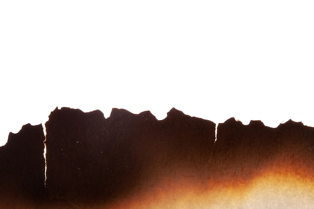 焦げた紙の端は白い背景で断熱されています。高品質の写真