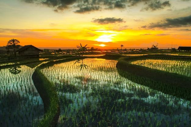하늘색 인도네시아 자연을 반영한 산에서 오후의 특별한 아름다움