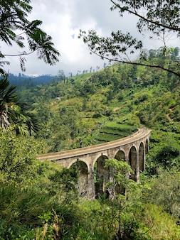スリランカのジャングルの鉄道の有名な9アーチ橋