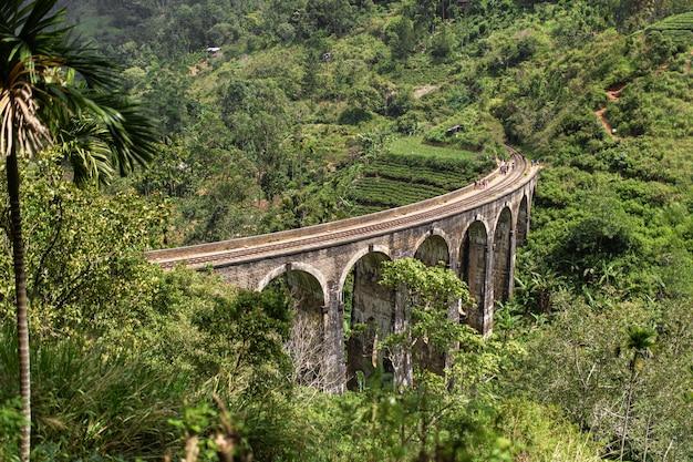 Знаменитый девяти арочный мост железной дороги в джунглях шри-ланки