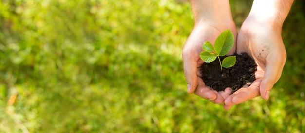농부는 손바닥에 어린 새싹이 든 흙을 들고 있다
