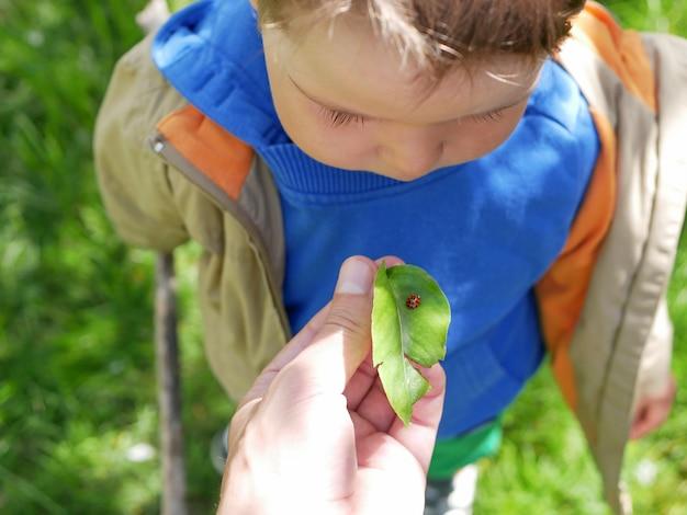 Отец показывает насекомое ребенку