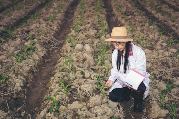 여성 의사는 현대 개념 책으로 토양을 검사합니다.