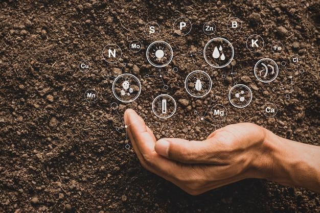 토양의 상징적인 기술로 심기 위한 비옥한 양토는 식물의 필수 식품입니다.