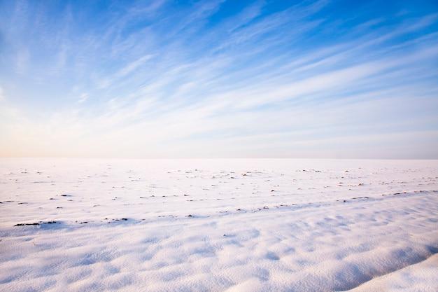 Поле засыпано снегом в зимний сезон. пасмурная погода