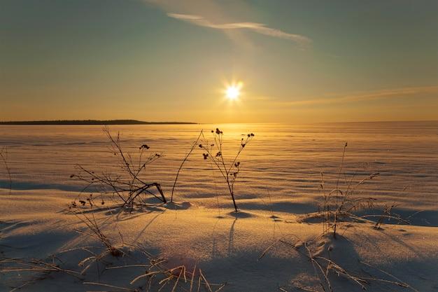 冬は雪に覆われた畑。日没時間