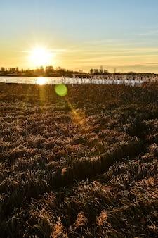 Первый лед на солнце на закате