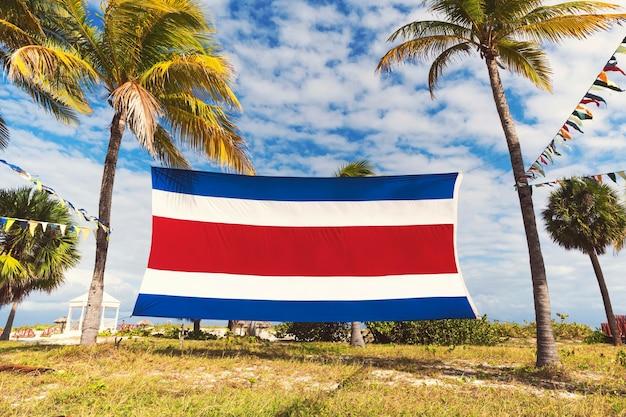 Флаг коста-рики с пальмами и голубым облачным небом. красивый тропический пейзаж. экзотическая южная природа.