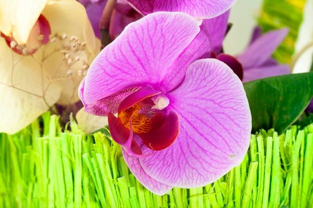 緑のバスケットと大きな花束になっているピンクの蘭の花