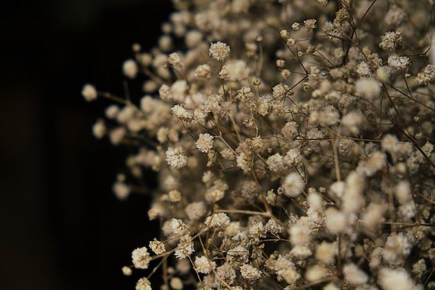 꽃은 아름답게 패턴으로 배열됩니다. 검은. 피사체가 흐릿합니다.