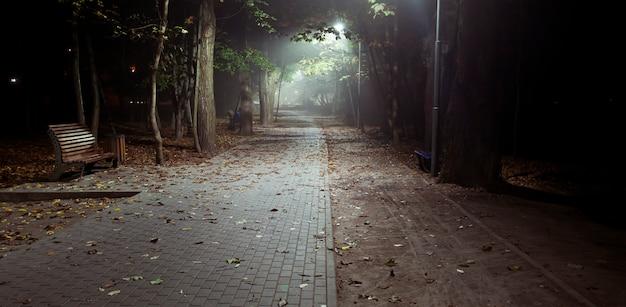 秋の公園で霧の夜