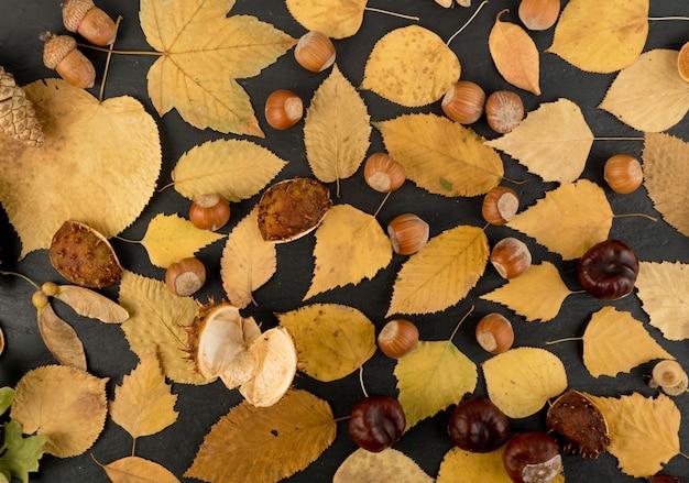 バーチ、オーク、メープル、栗、プラタナス、シナノキ、その他の葉が混ざった迷彩色の林床。平らな乾燥した葉のトップビュー