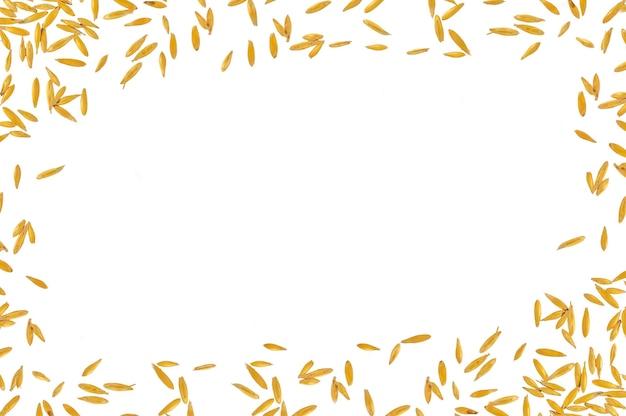 白い背景で隔離の穀物オーツ麦のフレーム