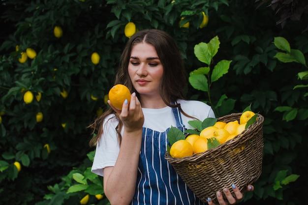 정원사 소녀는 한 손에는 바구니를 들고 다른 손에는 익은 레몬을 들고 레몬을 수확합니다