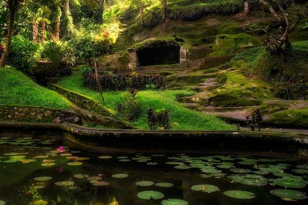 バリ島の象公園寺院の庭園