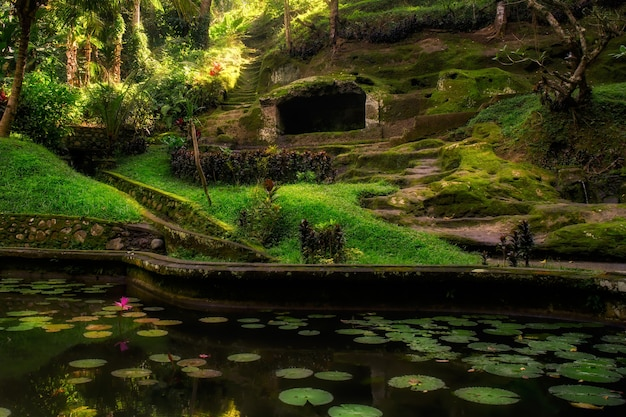Сады храма слоновьего парка на бали