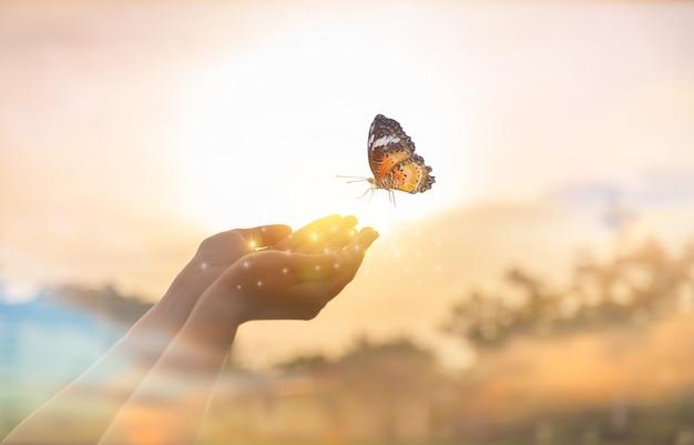 Девушка освобождает бабочку от момента концепция свободы