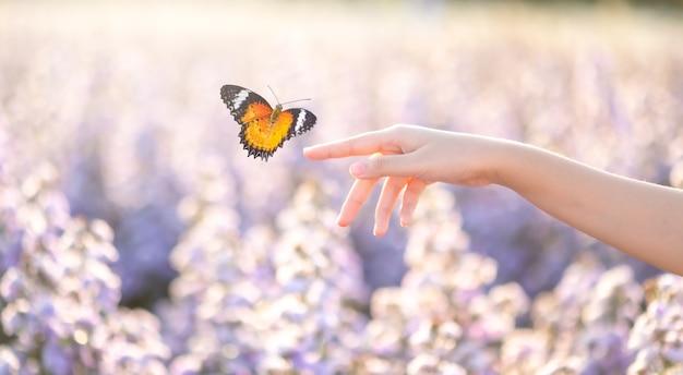 Девушка освобождает бабочку из кувшина, золотой синий момент концепция свободы