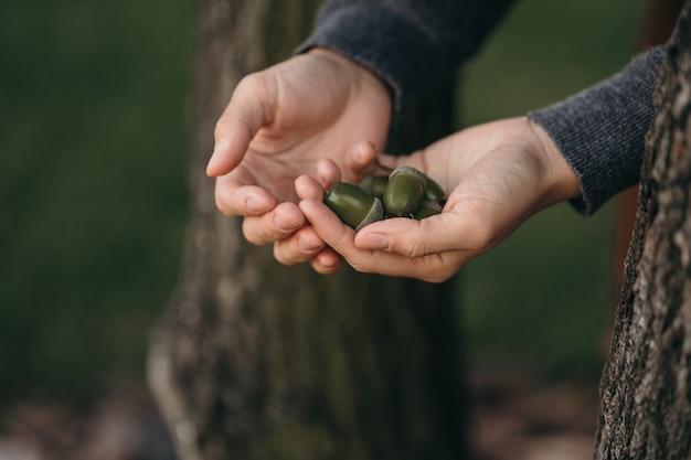少女は緑のどんぐりを手に持っています。どんぐりで手のショットをクローズアップ。