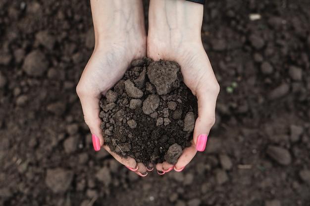 女の子は彼女の手で地球を保持します一握りのリッチブラウンsoilpinkマニキュア