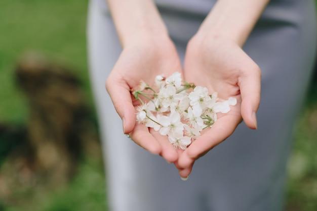 少女は白い桜の花びらを手に持ってクローズアップ1