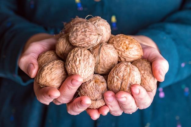 Девушка держит кучу свежих полезных грецких орехов