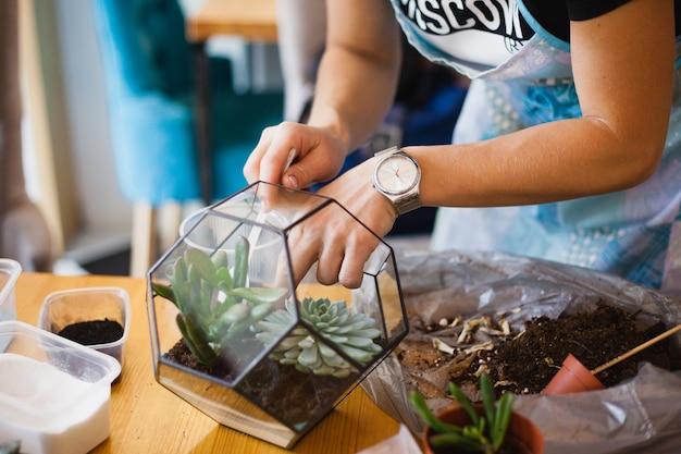 Девушка сажает стеклянную форму, сажает цветы, стеклянный террариум