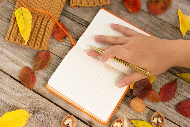 女の子は秋の日の計画を書き留めます