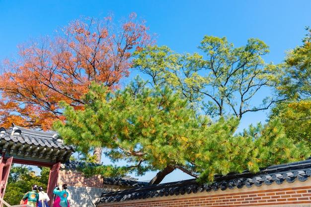 韓国の民族衣装または韓服の女の子と伝統的な韓国のドアと青い空を背景に秋の壁。