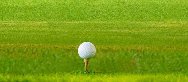 골프 공은 녹색 잔디밭에 있습니다.