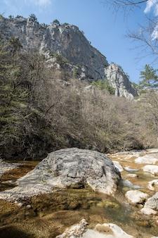 Гранд-каньон огромная скала среди деревьев снизу открывается захватывающий пейзаж на фоне голубого неба.