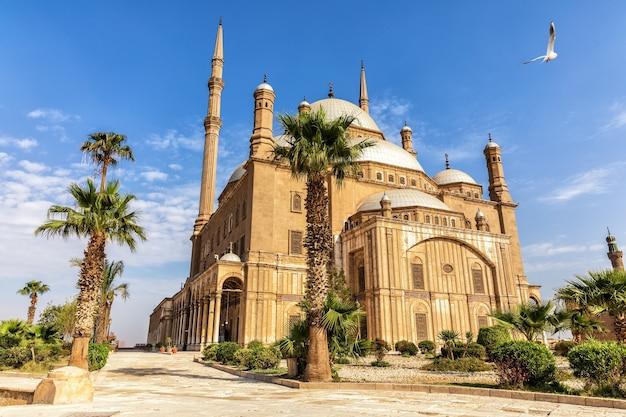 Великая мечеть мухаммеда али-паши или алебастровая мечеть в цитадели каира в египте.