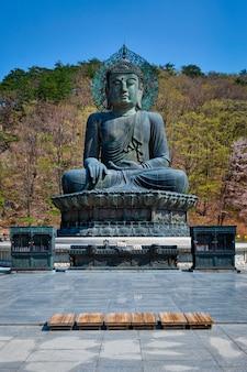 Статуя будды tongil daebul великого объединения в национальном парке seoraksan, южной корее.