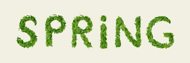 Зеленый сухой чайный лист, слово весна, вид сверху