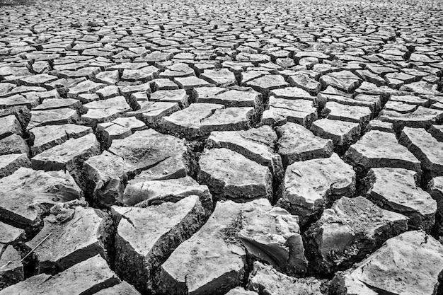 乾季には地面が割れた。