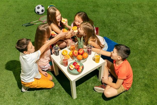 공원에서 푸른 잔디에 앉아 십 대 소년과 소녀의 그룹 무료 사진