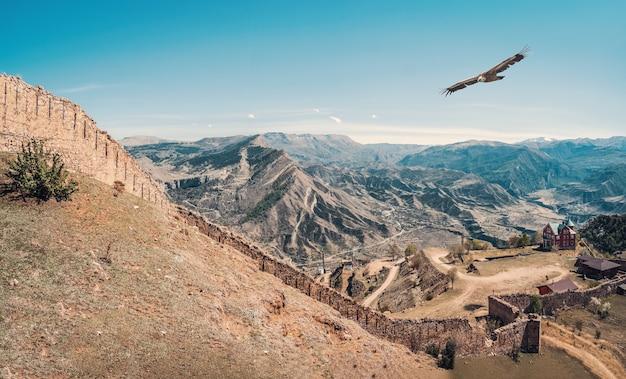 グニブ要塞はダゲスタンの歴史的建造物です。ワシは古い要塞の上を飛ぶ。ロシア。