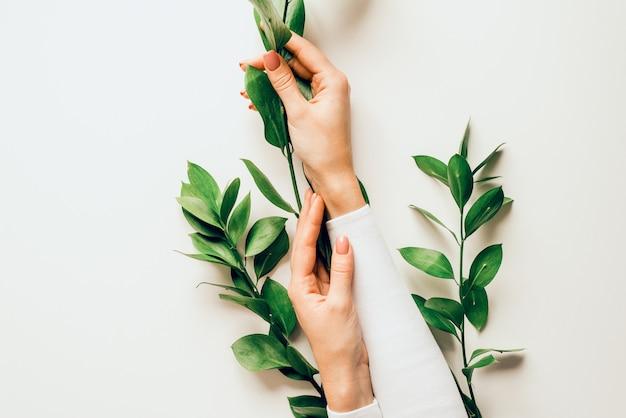 ヌードマニキュアを持つ美しい女性の手は、緑の葉の枝を保持します。手のケアの概念。手のしわ防止化粧品