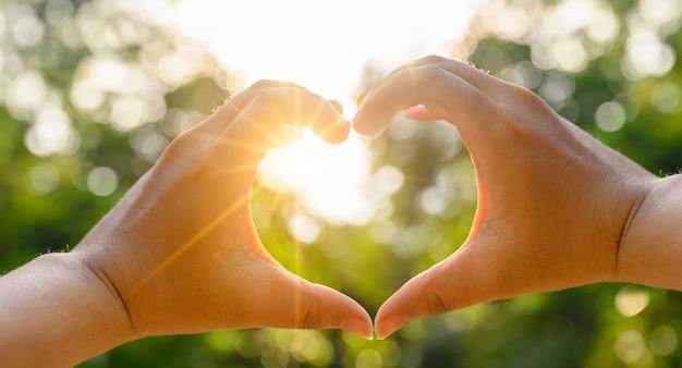 여성과 남성의 손은 태양 빛이 손을 통과하는 심장 모양입니다.
