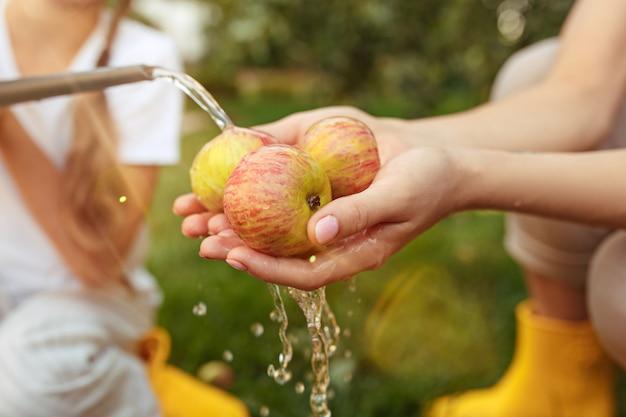 屋外の庭でリンゴを摘みながら幸せな若い家族